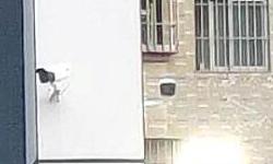 深圳工地监控系统安装 办公室安防监控系统